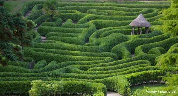 BeyssOnManagement: Wegweisungen durch die Labyrinthe von Strategie, Innovation, Produktion, Prozesse, Change und Management